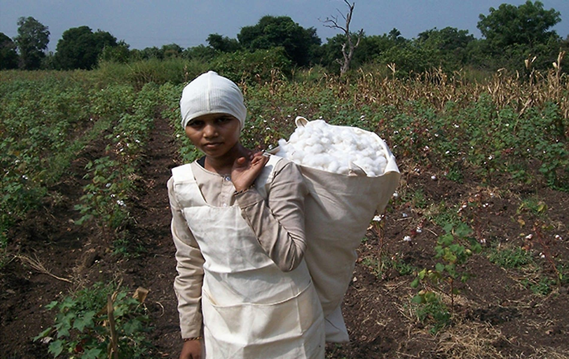 Woman carrying bale of cotton over her shoulder